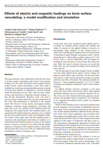 Effects of Electric and Magnetic Loadings on Bone Surface Remodeling
